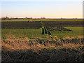 TL4179 : Turf field by Bedingham's Drove by Hugh Venables