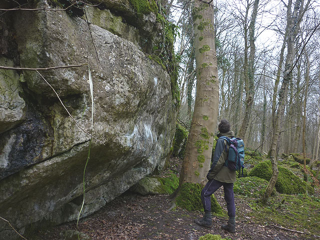 Bouldering area, Hyning Scout Wood