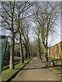 SU7273 : The Oscar Wilde Walk by Bill Nicholls