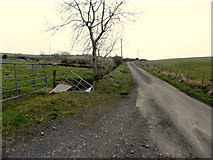 H6160 : Greenhill Road, Knockonny by Kenneth  Allen