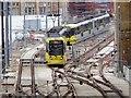 SJ8498 : Tram Approaching Victoria by David Dixon