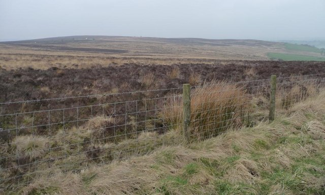 Open access moorland, east of Stoop Hill