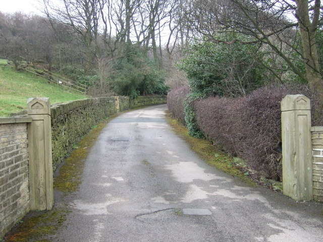 Driveway to The Wood