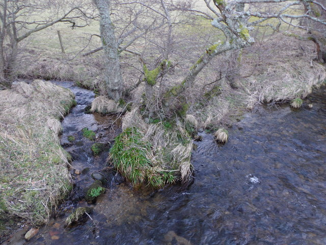 A confluence in Glen Rinnes