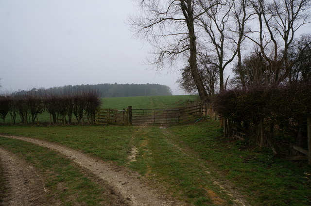 Wolds Way towards Thorns Wood