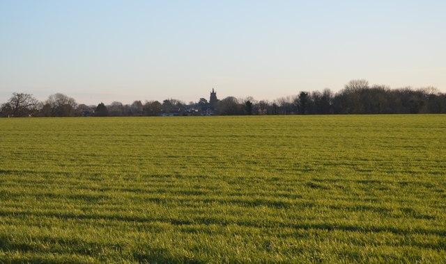 View towards Mattishall Burgh