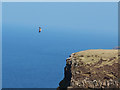 NG2364 : Sea Eagle above the Waternish cliffs by John Allan