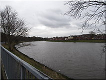 J3472 : View upstream in the direction of Ormeau Bridge by Eric Jones