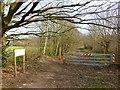 SJ5582 : Mersey Valley Trail near Norton Town Bridge by Raymond Knapman
