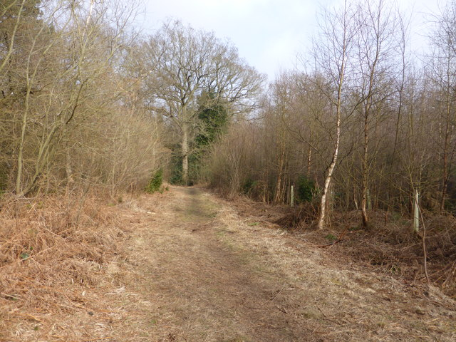 Path towards the River Glaven - south of Holt Lowes