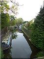 SJ9485 : Macclesfield Canal, High Lane Branch by Janusz Lukasiak