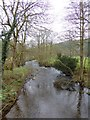 NY6228 : Crowdundle Beck by Oliver Dixon