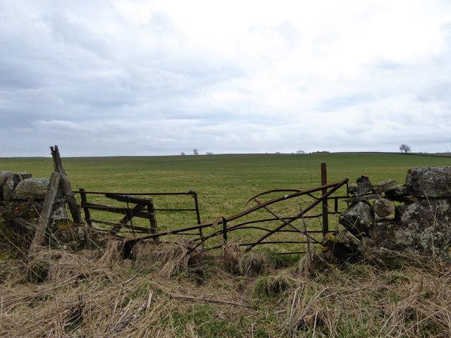 Broken gate, by Cameron Reservoir path