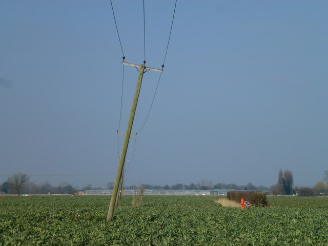 Poles in a Lincolnshire field south of Kirton