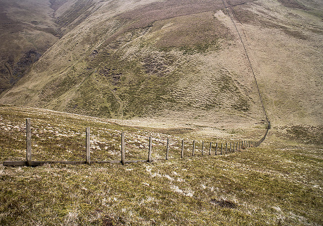 Fencing on Willowgrain Hill