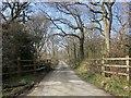 SX2788 : Lane to Penrose Green by Derek Harper