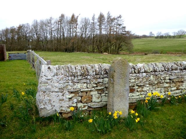Millennium stone, Middleton