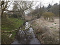 TM2484 : River off Station Hill Bridge by Adrian Cable