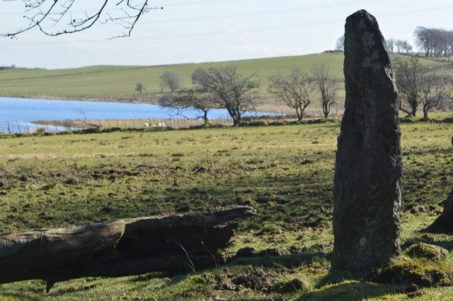 Braehead.  Standing stone