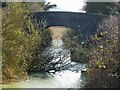 SP9011 : Wendover Arm - Bridge 5 - Drayton Beauchamp by Rob Farrow