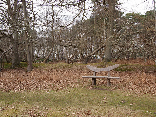 Seat, SWT Captain's Wood