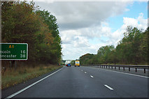 SK8254 : A1 northbound by Robin Webster