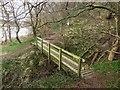NT9047 : Footbridge crossing Straw Dean by Graham Robson