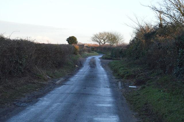 Norfolk lane