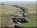 TF3535 : Large creek in Kirton Marsh, Lincolnshire by Richard Humphrey