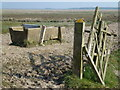 TF3535 : Gate and water tub on Kirton Marsh, Lincolnshire by Richard Humphrey