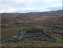 NN1522 : Sheepfold by the Allt an Stacain, Argyll by Claire Pegrum