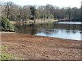 SU9770 : Obelisk Pond, Windsor Great Park by Alan Hunt