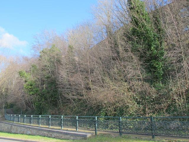 Thornbird Railings, Pipewellgate, NE8