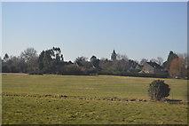 TF1205 : St Botolph's Church, Helpston by N Chadwick