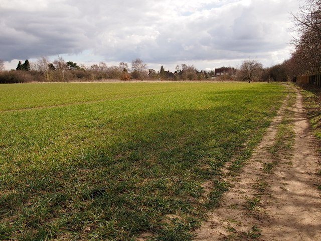 Field, Ipswich Northern Fringe looking back to Valley road