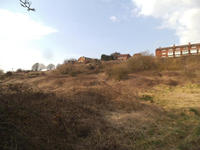 Upper Gornal Wasteland