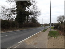 TM3876 : A144 Bramfield Road, Halesworth by Adrian Cable
