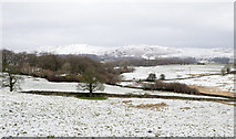 SD4695 : Snowed field near to Green Hill by Trevor Littlewood