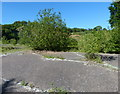 SO7463 : Concreted area at Woodbury Quarry by Mat Fascione