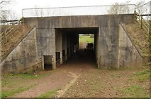 SO6928 : Bridge over a former railway by Philip Halling