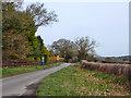 SU9992 : Bowstridge Lane by Robin Webster