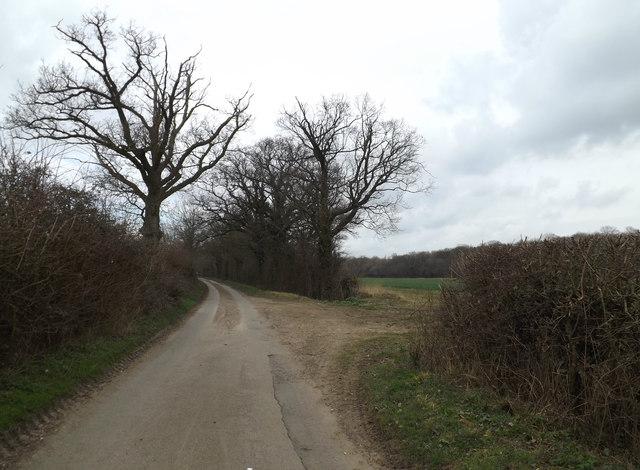 Green Lane & track