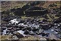 NY3108 : Sheepfold by Sour Milk Gill by Ian Taylor