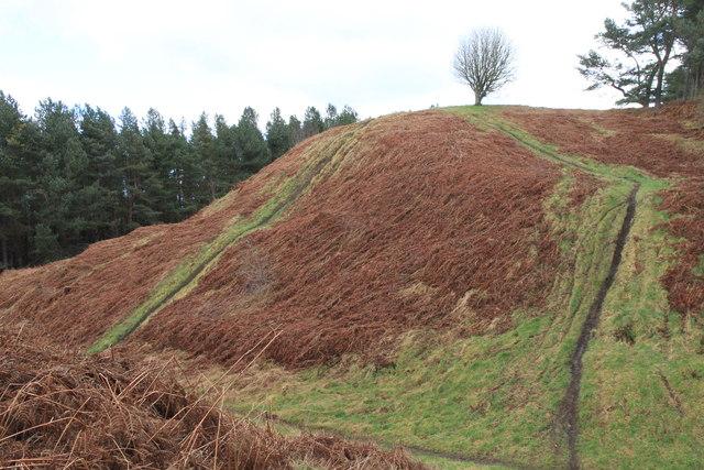 Steep sided gully on Binn Hill