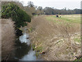 SU8346 : By-pass channel, River Wey by Alan Hunt