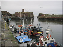 NT6779 : Dunbar Castle and Victoria Harbour by Les Hull