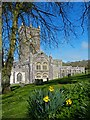 SM7525 : St Davids Cathedral by Robin Drayton
