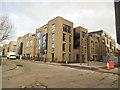 TQ3379 : Grange Walk - new apartments (2) by Stephen Craven
