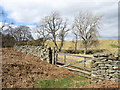NZ0409 : Gate at bridleway passage through dry stone wall by Trevor Littlewood