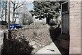 SJ9650 : Dreary Garden by Stu JP